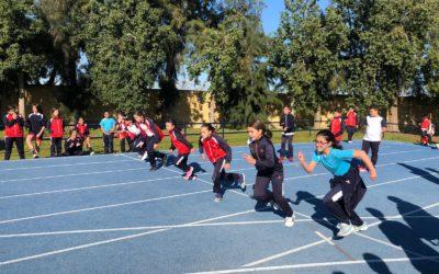 Mini Olimpiadas en Infantil y  Talleres y atletismo en Primaria