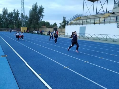 Olimpiadas 4º, 5º y 6º de EP. 2019